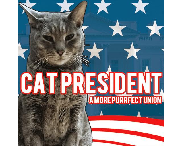 cat president game